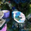 Cutie pictata Elsa